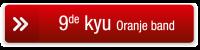 button 9de kyu oranje rood